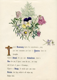 Rosemary, Pansy, Columbine, Daisy and Violet Jane Elizabeth Giraud, The Flowers of Shakespeare, 1846