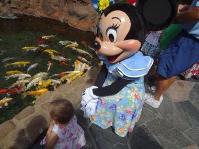 ミニーと鯉