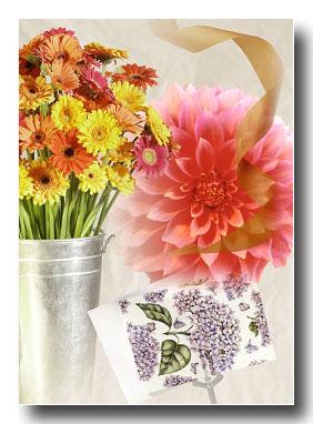 ホワイトデーにお花をプレゼント