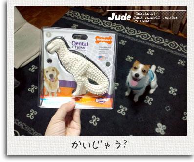 jude005