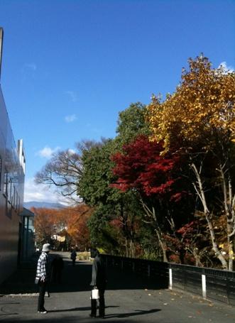 紅葉スポット長野県飯田市美術博物館