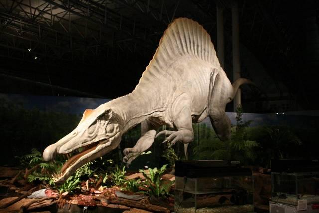 2009年幕張メッセで紹介されたスピノサウルス