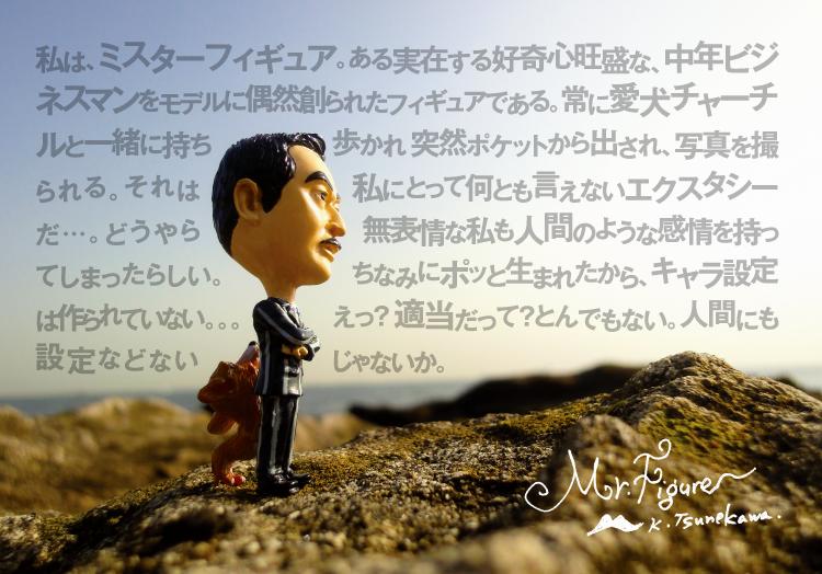 Mr.フィギュア プロフィール