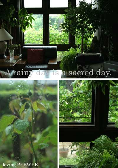 雨の日は神聖な日