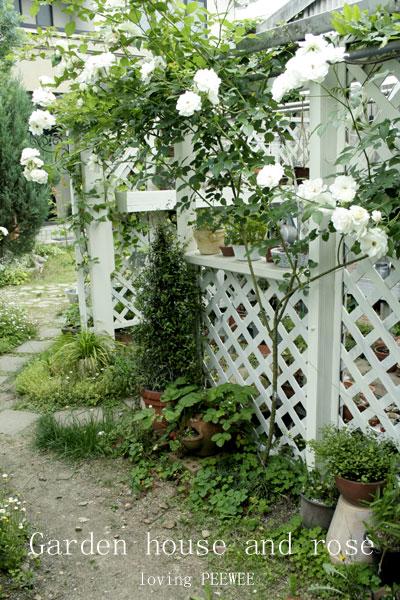 ガーデンハウスとバラ