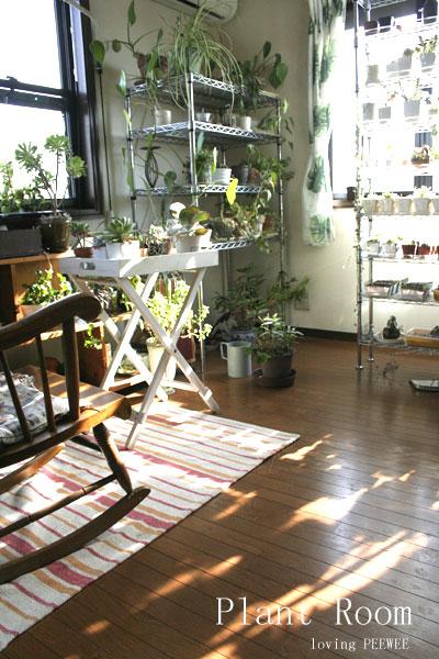 植物の部屋