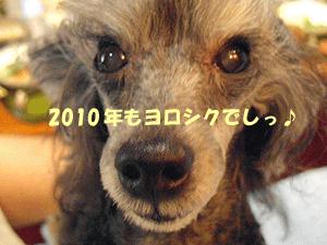 temari_20100101