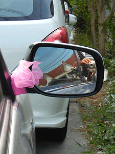 20120318_mirror