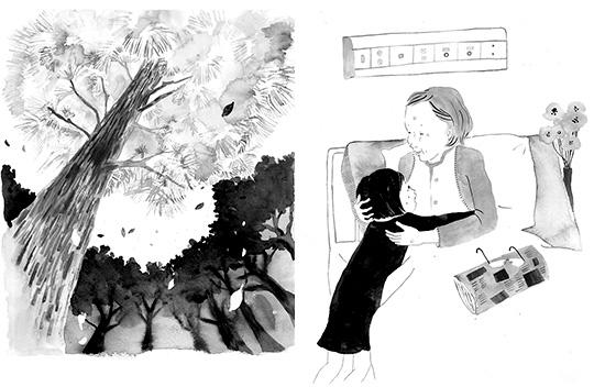 「ゆいはぼくのお姉ちゃん」挿絵4