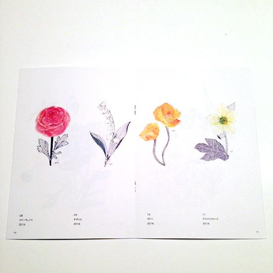 [The Secret Garden] 小冊子2