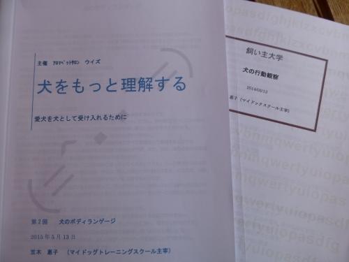 P1020392.JPG