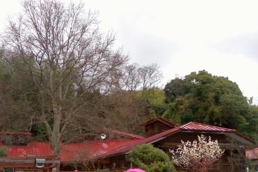 ピッコロ保育園