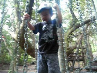 奄美自然観察の森遊具