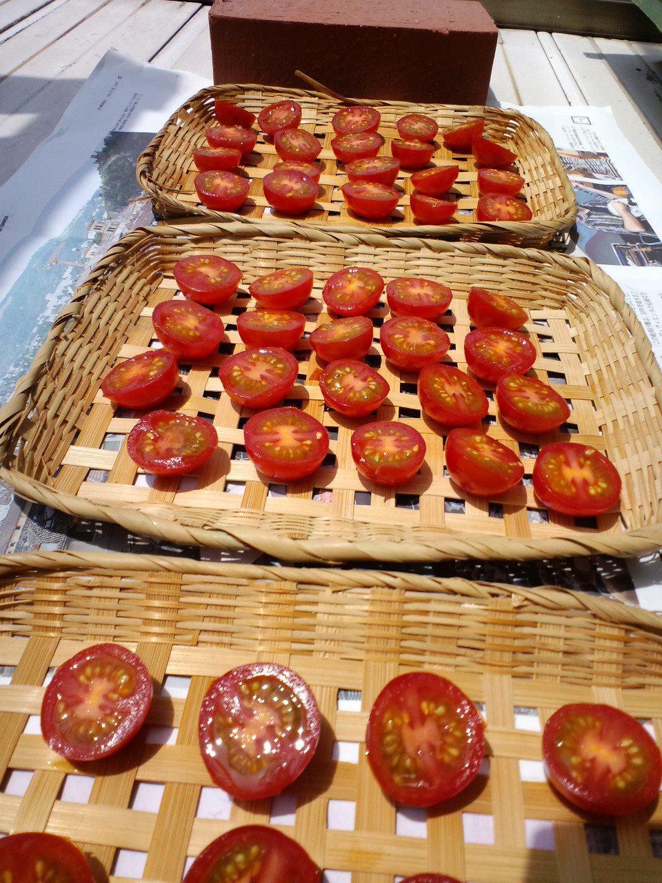 ドライトマト初挑戦!