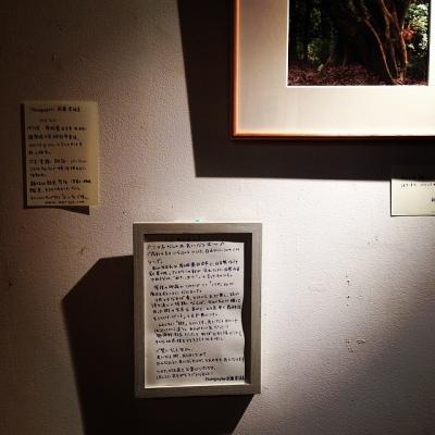 武藤奈緒美さん写真展