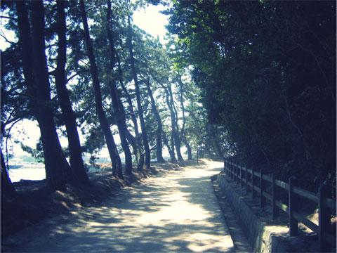 唐津城周辺を散策