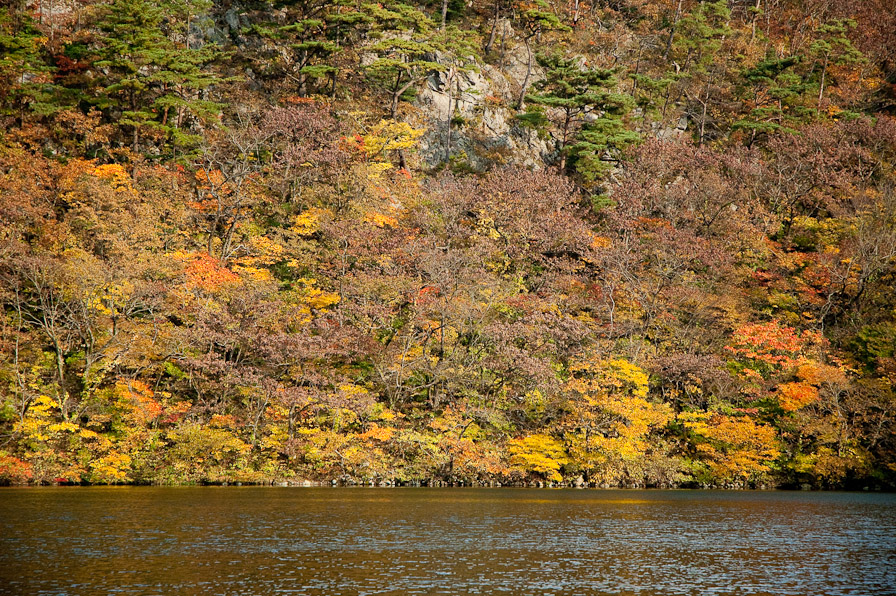 山居の池1