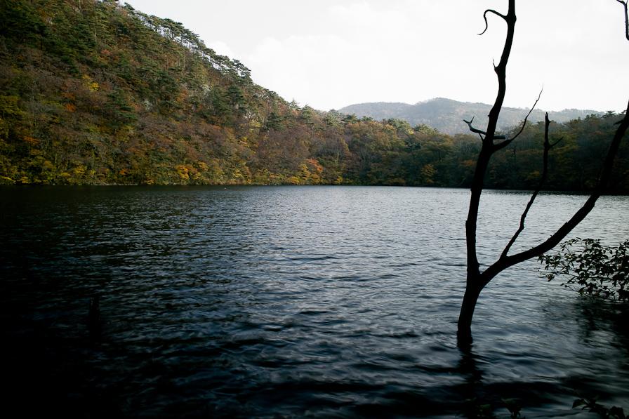 山居の池2