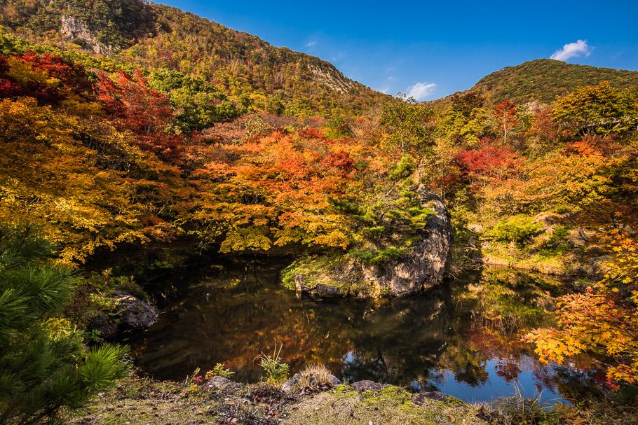 11_DSC7214(紅葉山公園).jpg