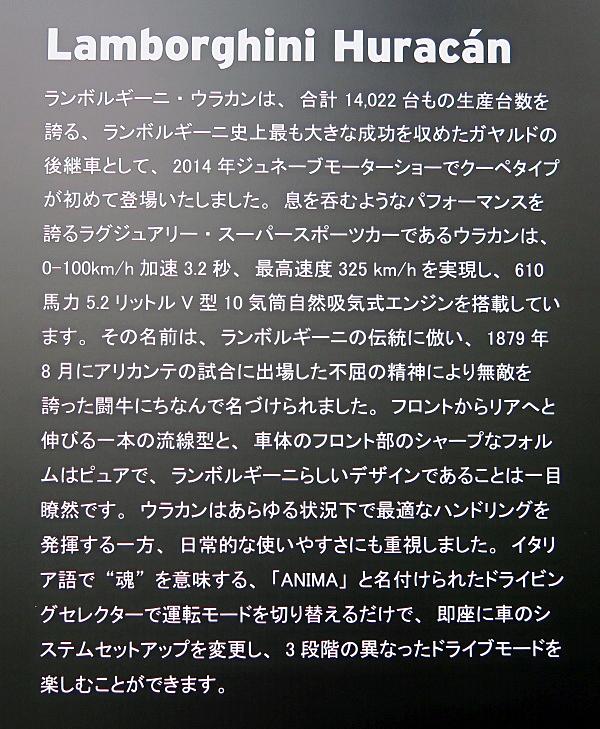 u17.jpg