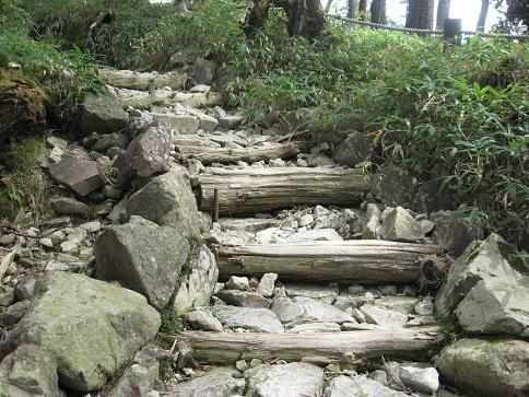 大台ケ原登山道