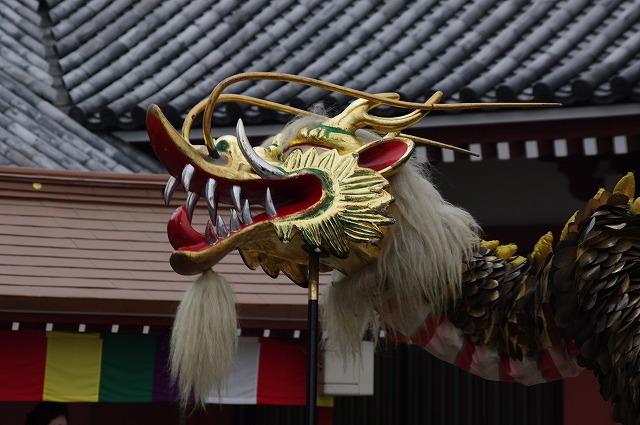 祭   花雷 日記