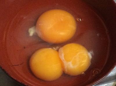 ふたごの卵