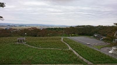 コスモス園から松山町を望む
