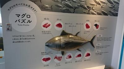 お魚ミュージアム4