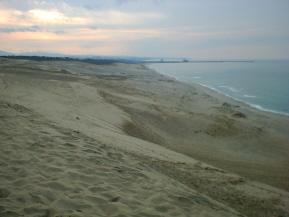 雄大な鳥取砂丘