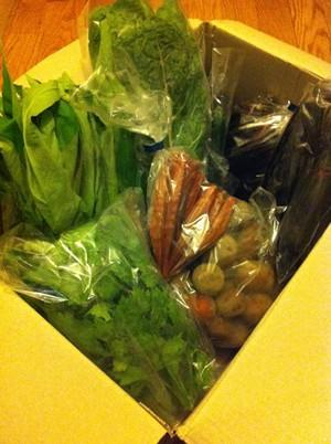 自然野菜のら