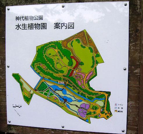 神代時植物園