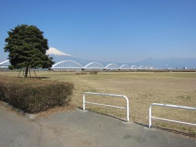 富士川緑地会場.JPG