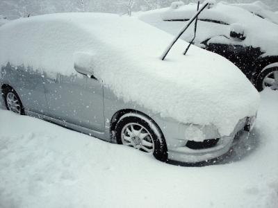 一日の降雪量