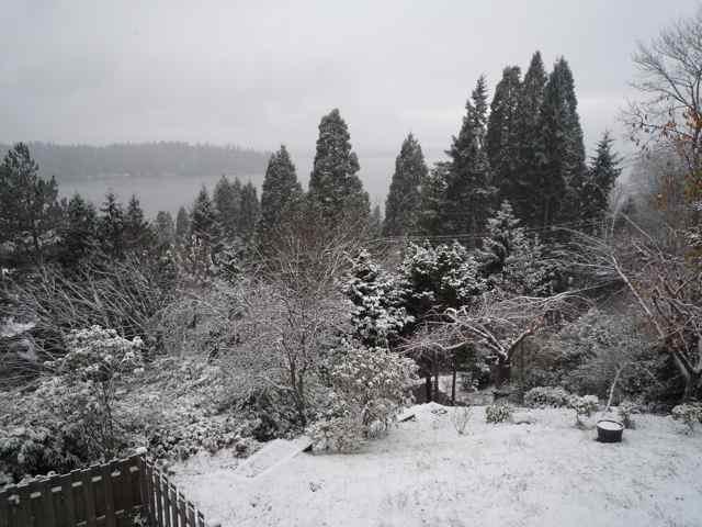 シアトル雪