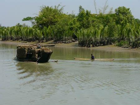 ニッパヤシの屋根材運搬船と一本の巨竹で川を走る人