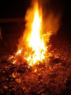 焚き火の域を超えています