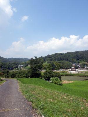 笠岡の田舎道