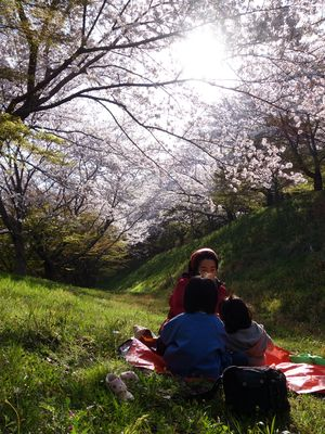 桜ピクニック♪
