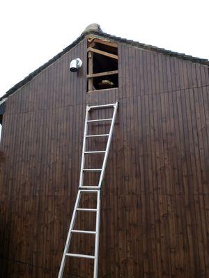 高い小屋組に潜入
