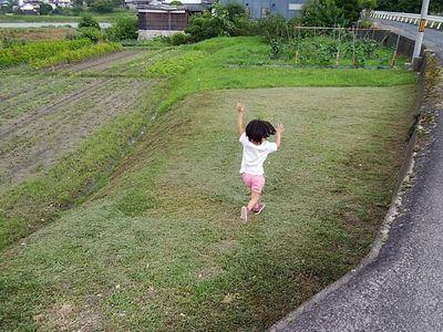草刈after