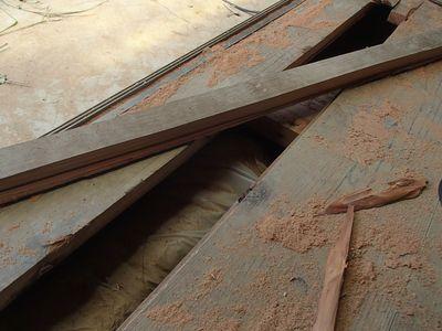 剥がして驚く床板の厚み