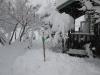 12月14日大雪1
