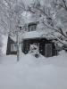 12月14日大雪2