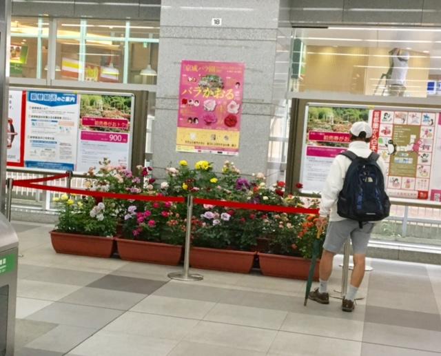 1D京成八千代駅