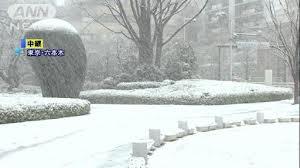 何だ、この雪は!