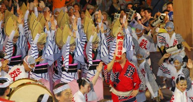 2011阿波踊り