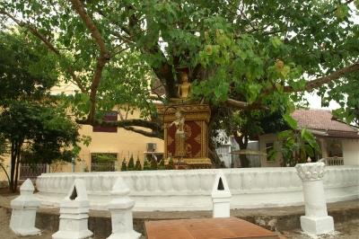 ワット・ビスンナラート境内の釈迦像とナーントランニー像