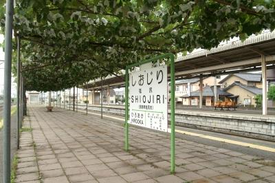 塩尻駅ホームのブドウ棚