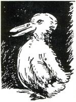 アヒルとウサギ、多義図形